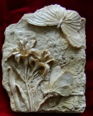 """<img src=Unique Gifts.jpg"""" alt=""""Butterfly Plaque Highly Detailed With Flower Detail"""">"""