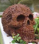 "<img src=Skull Rusty.jpg"" alt=""Skull Finished in Rust Effect Paint Screw, Nut and Bolt Design"">"